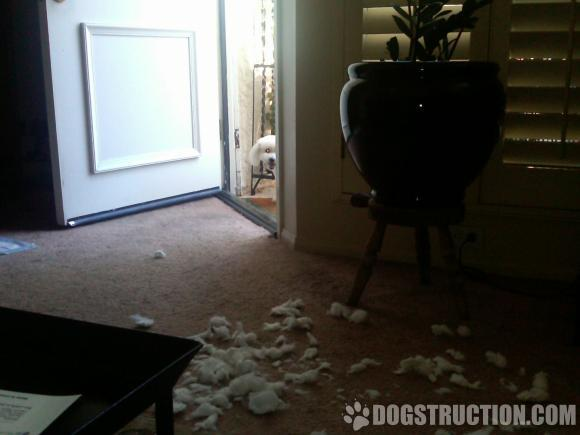 Destroyed pillows