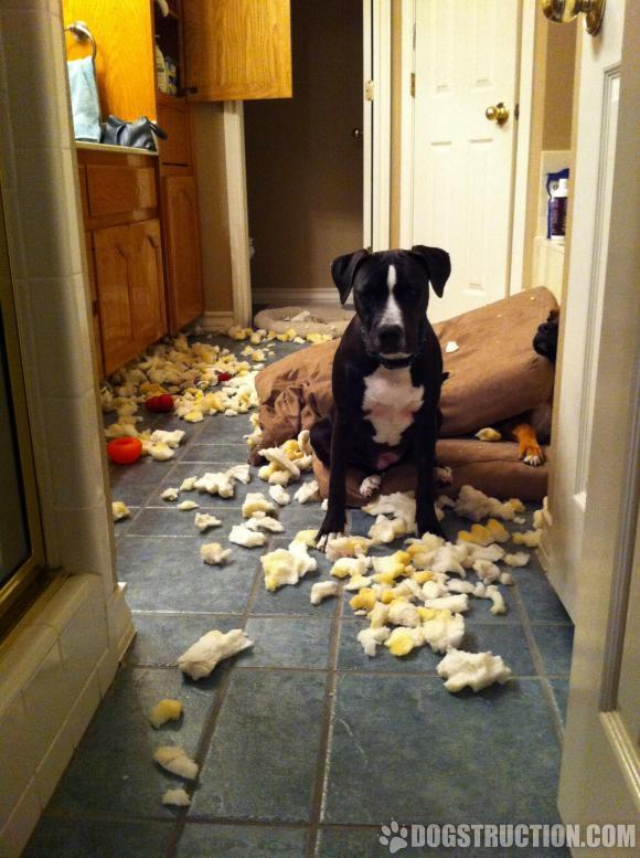 Clearly, it wasn't me!